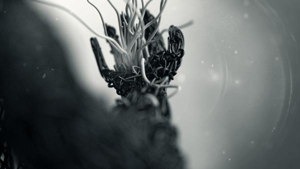 Weaving in Love #3 © Riccardo Mucelli