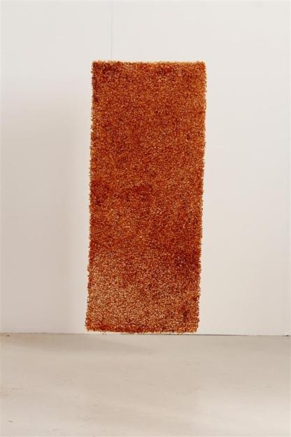 Seed Blanket #2 © Sam Baxter