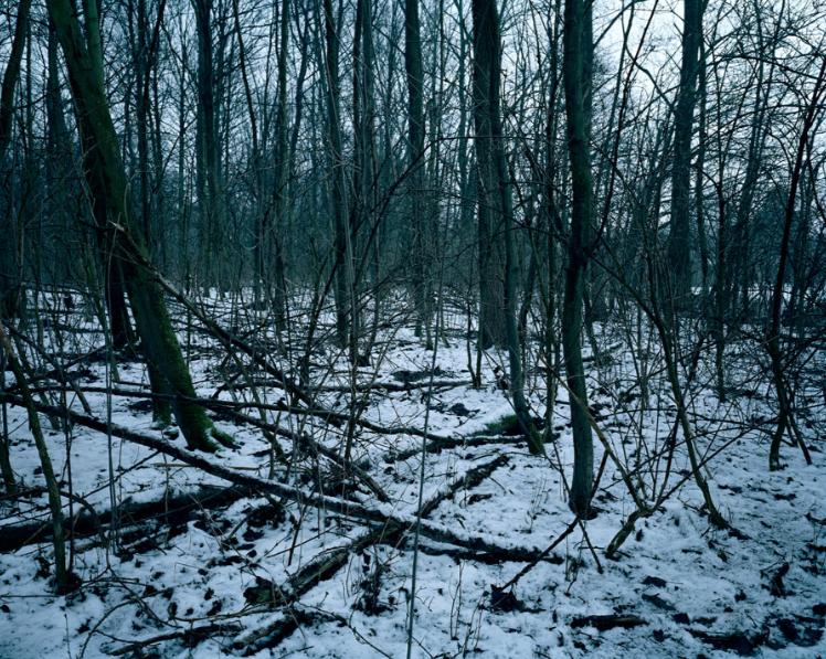 Verbranden-Molen, West-Vlaanderen © Chloe Dewe Mathews