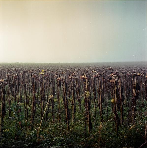 #1 © Julien Coquentin