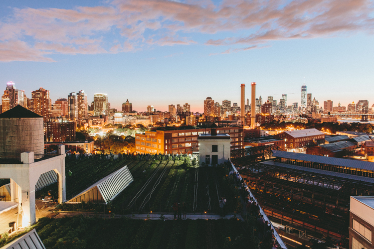 Trade CLXXIII |Brooklyn Grange Rooftop Farm © Pixel Trade / Shantanu Sharick