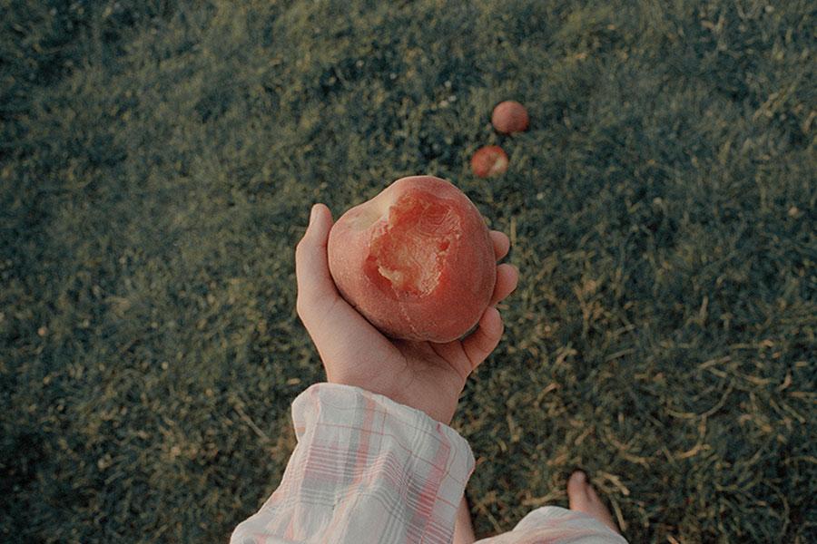 Screen memories #5 © Veronica Losantos